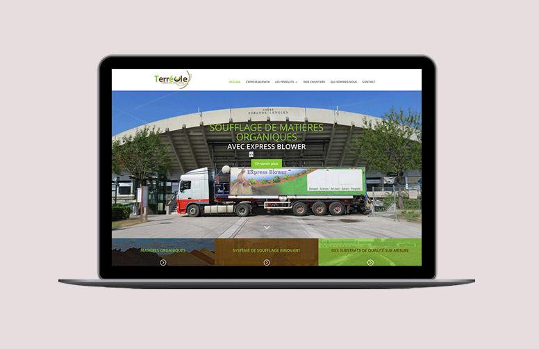 Webdesign seo Terreole